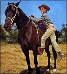 Johnny Crawford #johnnycrawford Old Western Movies, Johnny Crawford, The Rifleman, Tv Westerns, Boy Pictures, Johnny Was, I Fall In Love, American History, Cowboys