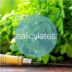 Sensitive to Salicylates? Here's a fact sheet and list of foods containing salicylates #salicylates thefoodwerewolf.com The Food Werewolf