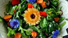 with bachelor's buttons, calendula & nasturtium flower petals Weird Fruit, Honey Dressing, Growing Gardens, Edible Food, Incredible Edibles, Exotic Fruit, Hair Regrowth, Garden Trees, Edible Flowers