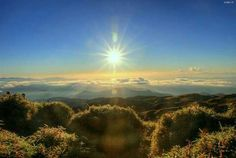 A breathtaking view at the summit of Mt. Photo by: Basekamp Market Market Mt Pulag, Visit Philippines, How To Memorize Things, Country Roads, Places, Travel, Outdoor, Voyage, Lugares