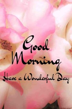 Looking for best Good Morning Wishes and Images with Rose? Check out our collection of beautiful HD Images, Pictures and Pics to send to your loved ones and spread a smile on their faces. Good Morning Beautiful Gif, Beautiful Morning Pictures, Good Morning Roses, Good Morning Messages, Good Morning Greetings, Good Morning Good Night, Morning Wish, Morning Quotes, Latest Good Morning Images