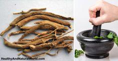 The Health Benefits and Uses of Ashwagandha