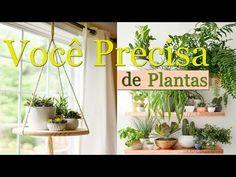 Plantinhas em Casa ! | Maryane Nunes - Design de Interiores - YouTube