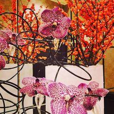#CreativeDisplay #Colourful #Flowers
