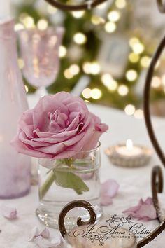 ༺ღ༻ Table decoration with dusty pink rose. Beautiful Roses, Pretty In Pink, Beautiful Flowers, Beautiful Bride, New Blue, Pink And Green, Rose Cottage, Pink Champagne, Champagne Party