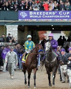 American Pharoah with Victor Espinoza come onto the track at Keeneland on October 31, 2015. Photo By: Chad B. Harmon