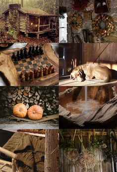 Hagrid's hut; care of Magical Creatures professor Autumn Aesthetic, Brown Aesthetic, Aesthetic Collage, Aesthetic Fashion, Theme Harry Potter, Harry Potter Aesthetic, Hogwarts, Hagrids Hut, Albus Severus Potter
