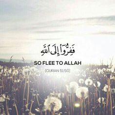 Surah Ad-Dhariyat Verse 50