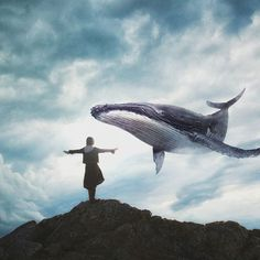 photo by ⏩edited by Me™ Fantasy Creatures, Sea Creatures, Whale Art, Wale, Delphine, Blue Whale, Humpback Whale, Surreal Art, Photo Manipulation