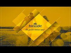 Plano de Marketing Hinode 2016 - Erick Bastos - http://incbizzmarketingtips.com/plano-de-marketing-hinode-2016-erick-bastos/