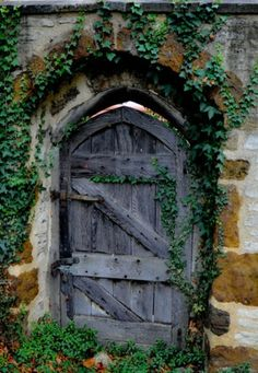 Wooden gate in stone wall with greenery ~ enchanted garden entry