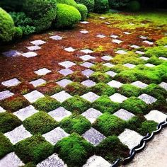 Kyoto, Japan - For more innovative gardening tips, see book, Shamanic Gardening: Timeless Techniques for the Modern Sustainable Garden
