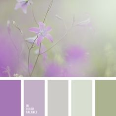 green and purple,