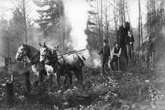 Grant Street & Victoria Drive, 1905 Clearing land for a blacksmith shop. Source: City of Vancouver Archives Vintage Pictures, Old Pictures, Old Photos, Blacksmith Shop, Past Tense, Horse Drawn, Most Beautiful Cities, Historical Pictures, History Facts