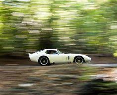 "Mercedes-Benz 300SL Roadster - 1954 BMW 507 -1957 Corvette ""Sting Ray"" - 1967 Jaguar XKSS - 1957 Shelby Daytona Cobra Coupe - 1965 Porsche 356B Super 1600 - 1961 Ferrari"