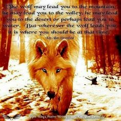 """""""The Wolf may lead you to the mountain; he may lead you to the deep valley; he may lead you to the barren desert; or perhaps even lead you to water. But wherever the Wolf takes you. it is where you should be at that moment."""" by Ken Allan Dronsfield Wolf Pack Quotes, Wolf Quotes, Wisdom Quotes, Animal Spirit Guides, Wolf Spirit Animal, Beautiful Wolves, Animals Beautiful, Grand Chat, Pomes"""
