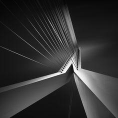 (8) Erasmus Bridge (c) Joel Tjintjelaar This is the leading image from the Shape of Light series.