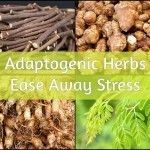 10 Adaptogenic Herbs To Ease Away Stress
