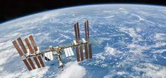 UFOLOGIA - OVNIS ONTEM: Plâncton descoberto fora da estação espacial