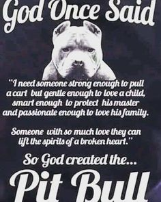 Pitbulls are love See More at fb.me/pitloversclub #pitbull #pitbullsofinstagram #pitbulls #pitbulllove #pitbulladvocate #pitbulllife #pitbullsofig #pitbullpuppy #pitbullmom #pitbullmix #pitbullsofficial #pitbullpride #pitbullinstagram #pitbulllover #pitbulllovers #pitbullnation #pitbullgram_ #pitbullterrier #pitbullgram #pitbullfriends #pitbullsarelove #pitbullrescue #pitbullvixens #pitbullove #pitbullproblems #pitbullfamily #pitbullmommy #pitbullsofinsta #pitbullsrule #pitbulllovers…