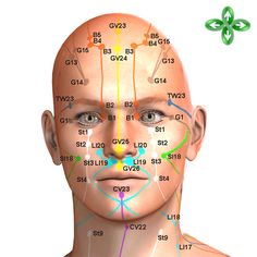 facial acupuncture points - Google Search