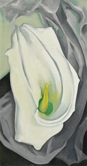 """arsvitaest: """" Georgia O'Keeffe, White Calla Lily, oil on canvas """" Calla Lillies, Calla Lily, Georgia O'keefe Art, Georgia O Keeffe Paintings, Wisconsin, Oil Painting Reproductions, American Artists, Oil On Canvas, Diy Canvas"""