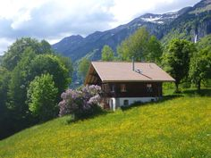 Beautiful chalet with an exceptional view in #Jungfrau region, #Switzerland. This is a typical charming chalet, entirely renovated! #homeexchange #mountain #ski