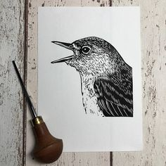 This Nightingale linocut is printed by hand - each is a unique work of art. Nightingales are famous for their song. Its a phenomenally rich, varied, virtuoso sound that you cant believe comes from a small bird. They like to keep a low profile though - Nightingales are very hard