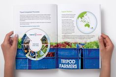 Tripod Farmers Profile #document #layout #farmers