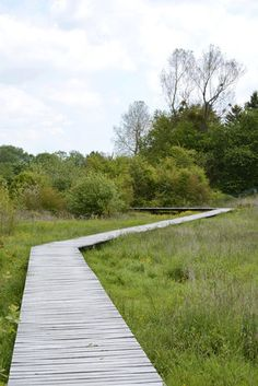 TERRITOIRES, Landscape Architects, Philippe Convercey, Landscape Architect, Etienne Voiriot, Landscape Architect, Franck Mathé, Landscape Architect — Wet meadows and source of the river Norges