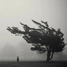 Photography by Lauren Rosenbaum
