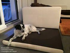 Auf diesen super Hundebetten schlafen meine Hunde tiefenentspannt. My animals sleep deeply relaxed on these super dog beds. I miei animali dormono profondamente rilassato su questi letti per cane. http://www.pet-interiors.de/de/hundematte_pg3