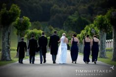 Avenue of plane trees, Mission Estate Winery wedding - Tim Whittaker Photography
