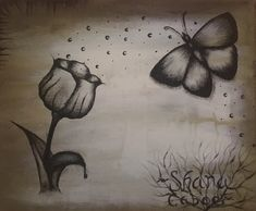 Painting, flower, butterfly 🦋