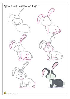 Apprendre à dessiner un lapin de profil, méthode pour dessiner un lapin bicolore.