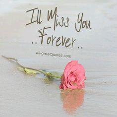 Te extrañaré siempre..