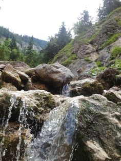 Mountain stream in beautiful Lechnergraben. This integral nature reserve in Lower Austria is a stunning place for hiking! Nature Reserve, Peace Of Mind, Austria, Fields, Hiking, Places, Water, Mountain, Outdoor