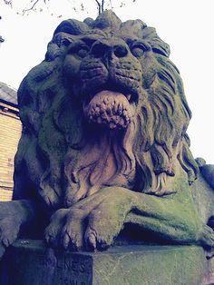 Saltaire Lion