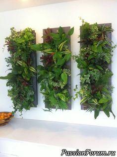 Indoor Vertical Garden By Brandon Pruett Using Lush Ferns