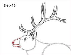 Learn how to draw an elk with this how-to video and step-by-step drawing instructions. A new animal drawing tutorial is uploaded every Tuesday. Deer Drawing Easy, Elk Drawing, Easy Drawings, Animal Drawings, Drawing Animals, Step By Step Drawing, Montana, Xmas, Carving