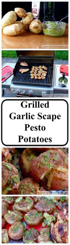 Grilled Garlic Scape Pesto Smashed Potatoes--boil then smash potatoes ...