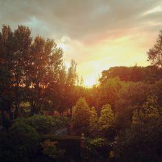 Monkseaton sunset
