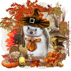 ✿ ✿New CT Tags for Laguna ✿ ✿ The beautiful New Tube **Halloween Orchestra (Hedgehog with Bells)** from Laguna Paint Shop Pro comp. Dog Halloween, Halloween Crafts, Happy Halloween, Summer Dog, Paint Shop, Happy Thanksgiving, Cute Baby Animals, Cute Art, Cute Babies
