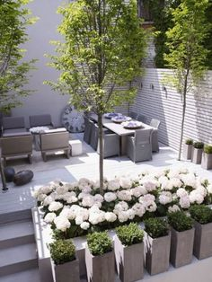 amazing rooftop garden design ideas to enhance the beauty of your house page 11 Contemporary Landscape, Landscape Design, Contemporary Gardens, Garden Modern, Landscape Architecture, Small Gardens, Outdoor Gardens, Terrace Design, Rooftop Design