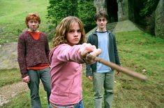 """You! You … foul … loathsome … evil … little cockroach!"" - Hermione"