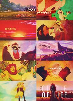 """It's the greatest adventure find yourself in the circle of life."""