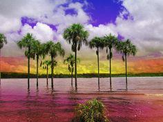 Heres, Boliviar, Venezuela Lagune de Canaima (by Petits Voyages)