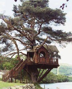 Treehouse lodge in Loch Goil, Scotland