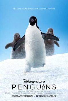 Penguins (2019) - Rotten Tomatoes