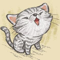 American Shorthair kitten on Behance